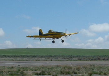 Ag Pilot, Crop Duster